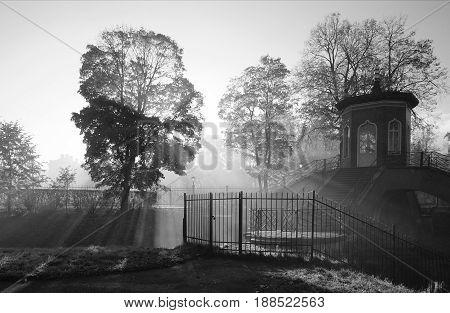 Misty autumn morning in Alexandrovsky Park in Tsarskoye Selo