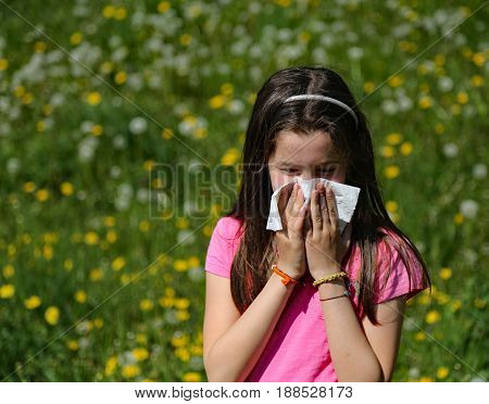 Little girl with long brown hair blows her nose with the handkerchief in the middle of the meadow in spring