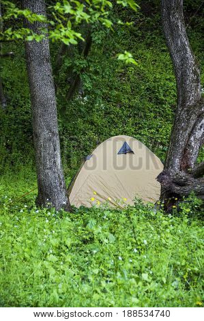 a brown tourist tent in the forest
