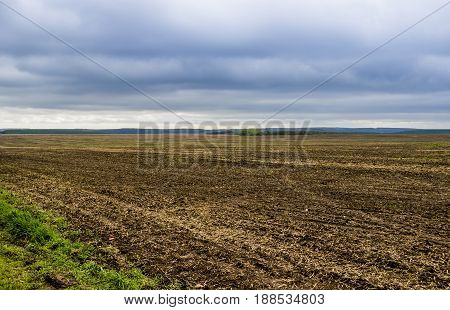agricultural landscape of spring arable and green areas