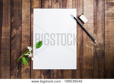 Photo of blank stationery: letterhead pencil eraser and cherry flowers and green leaves on wood background. Responsive design mockup. Top view.