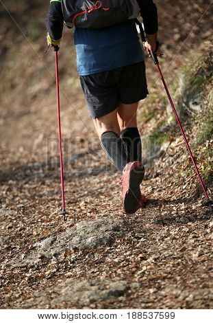 Man Practices Nordic Walking Sport On The Mountain Trail In Autu