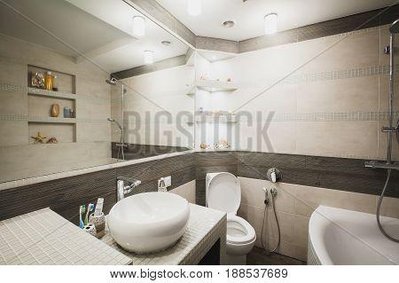 Stylish luxury water closet with huge wall mirror modern wash sink and hygienic shower. Horizontal
