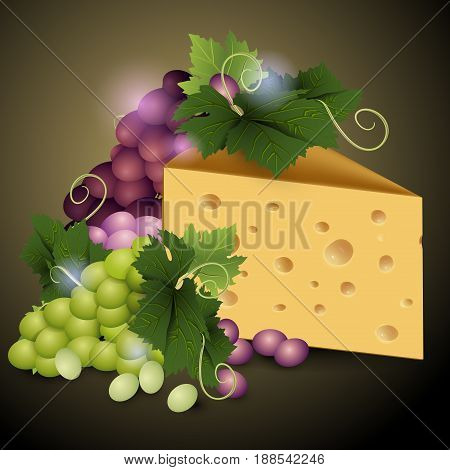 Cheese and ripe grapes on a dark background. Ripe grape. Vector illustration