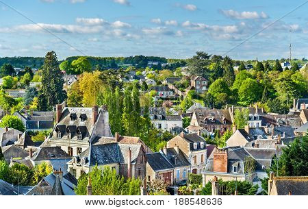 View of Amboise, a town in the Loire Valley - France