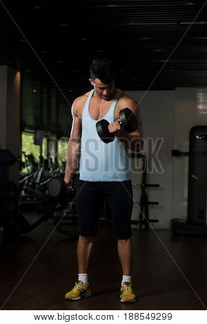 Biceps Exercise With Dumbbell In A Fitness Center