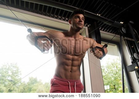 Man Exercising Chest In The Gym