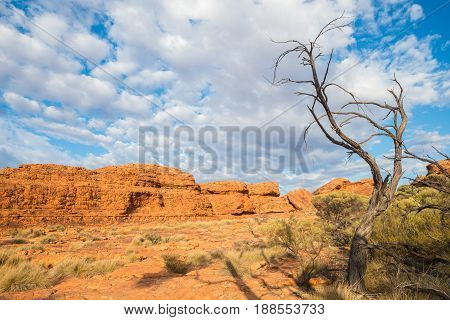 The landscape of Kings canyon in Northern Territory state of outback Australia.
