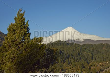 Snow capped peak of Antuco Volcano (2,979 metres) rising above a forested valley in Laguna de Laja National Park in the Bio Bio region of Chile.