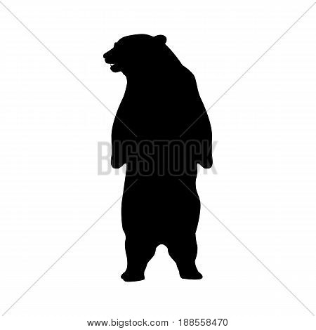silhouette of bear. Bear Silhouette Animal isolated on white background