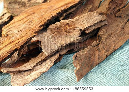 Several strips of Giant Maple Bark are set in place to be processed for herbal medicines after being washed clean and air dried.