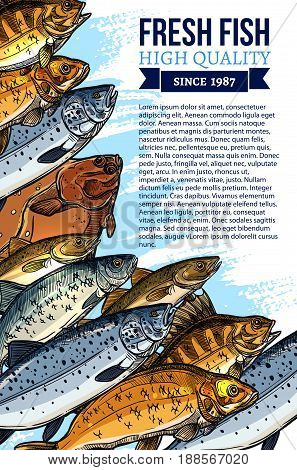 Fishing poster for fresh fish food market design. Vector seafood and fish catch of fisherman salmon, herring and sheatfish or tuna, trout, pike and carp or flounder for sea food shop or restaurant