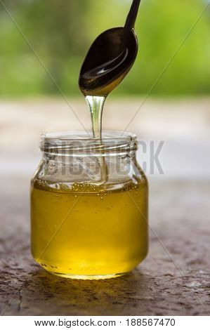 Honey In Jar And Window With Green On Backcground