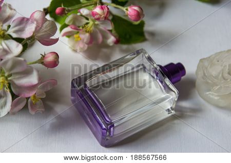 Women's perfume and spring apple blossom branch. Female romantic perfumes.