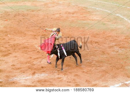 Woman Torero At A Bullfight In Valladolid On Mexico