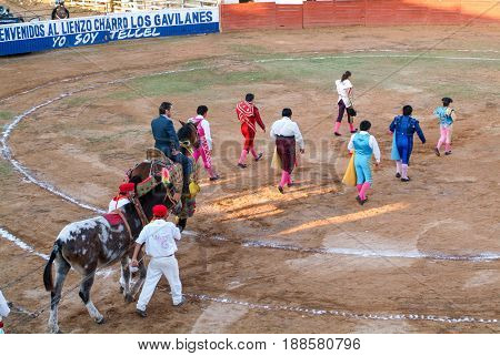 Entrance Of Toreros At A Bullfight In Valladolid On Mexico