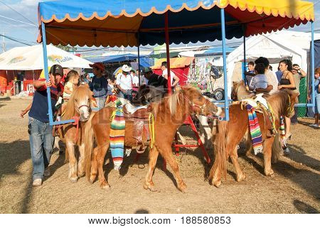 Childs Riding Ponys Of A Carousel