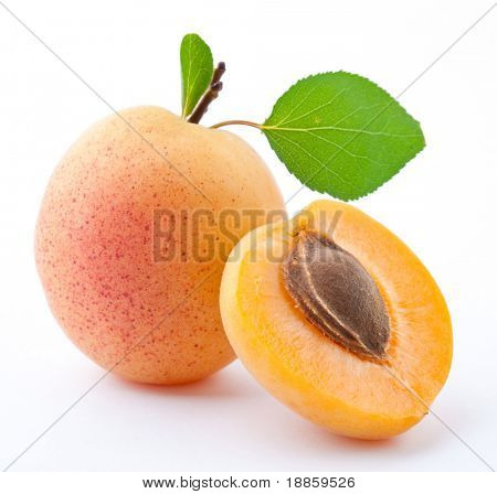 Apricot on a white background