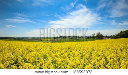 Fields In Germany