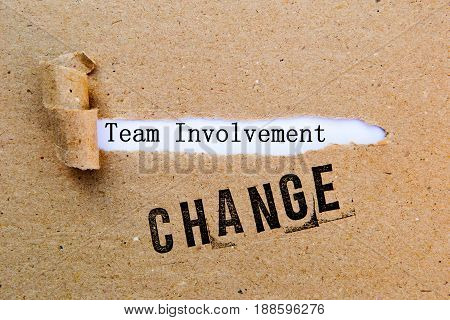 Change - Team Involvement - successful strategies for change
