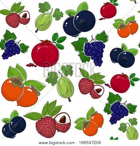Fruit Berry Seamless Pattern Juicy Persimmon and Red Pomegranate Grapes with Fresh Gooseberry Exotic Lichee and Ripe Blueberries Vector Illustration