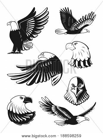Monochrome illustrations set of eagles. Vector elements for logo, badges or labels design. Bird eagle silhouette, freedom eagle flying illustration