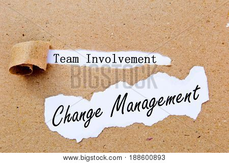 Change Management - Team Involvement - successful strategies for change management