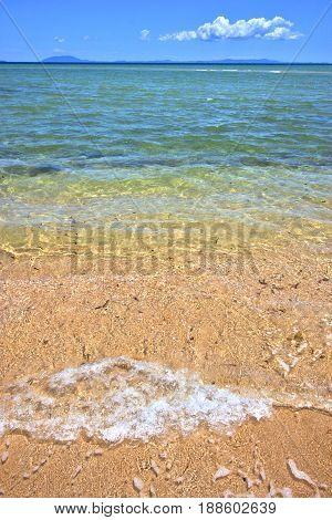 Paradise Beach Seaweed  Indian Ocean Nosy     Foam