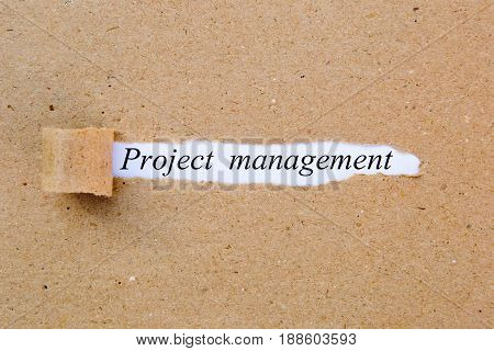 Project Management - printed text underneath torn brown paper