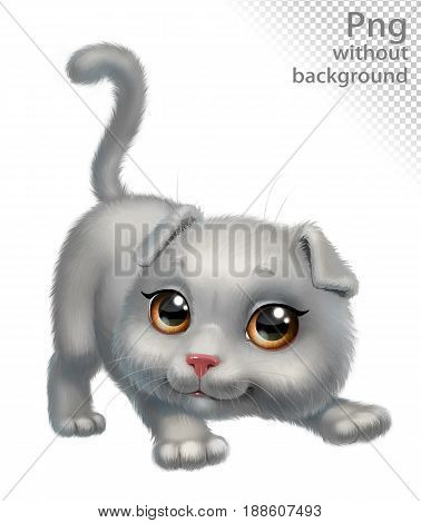 Gray lop-eared cat playing, png without background