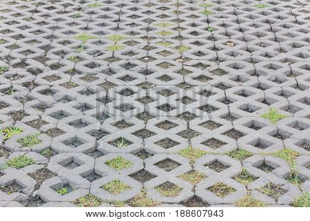 vintage pavement background with green plants and mud
