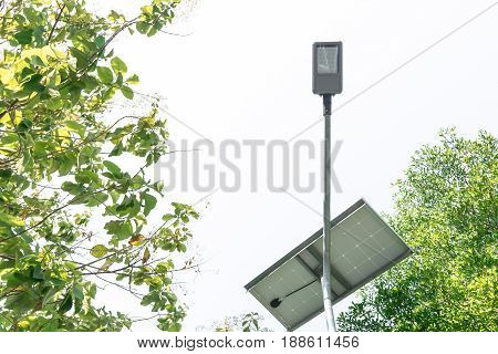 Street light bulb and Solar power 7