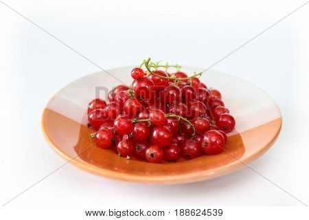 A bunch of red currant berries. Ripe sour berries. Transparent red berries on a plate.