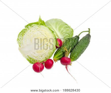 Two halves of a head of the young fresh white cabbage two fresh cucumbers and several red radish on a light background