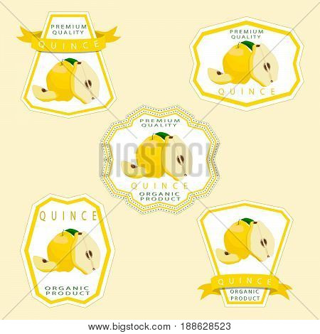 Vector illustration logo for whole ripe yellow fruit quince green stem leaf cut half sliced pear background.Quince pattern consisting of natural sweet food.Eat fresh tropical fruits quinces to health.
