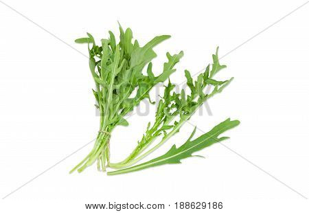 Bundle tied with twine stem and separate leaf of the fresh arugula closeup on a light background