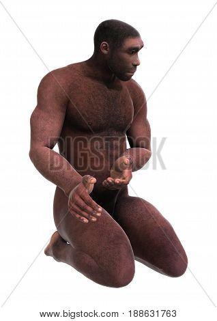 3D Rendering Homo Erectus On White