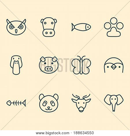 Animal Icons Set. Collection Of Duck, Night Fowl, Claw Print And Other Elements. Also Includes Symbols Such As Pig, Bone, Deer.