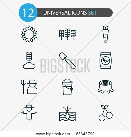 Farm Icons Set. Collection Of Growing Plant, Sweet Berry, Helianthus And Other Elements. Also Includes Symbols Such As Grower, Shovel, Bugaboo.