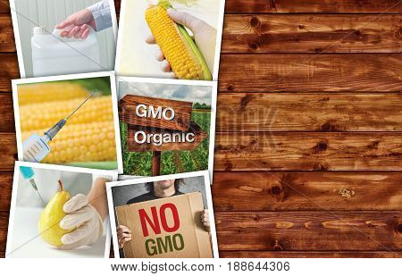 Genetic modification science and technology in agriculture photo collage on wooden background as copy space