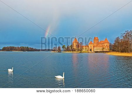 Couple Of White Swans And Rainbow Over Galve Lake Trakai