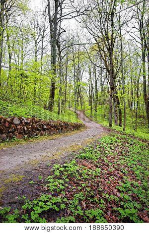 Trailway At Traku Voke Public Park Of Vilnius