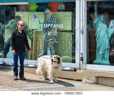 Man With Dog Strolling In Niagara