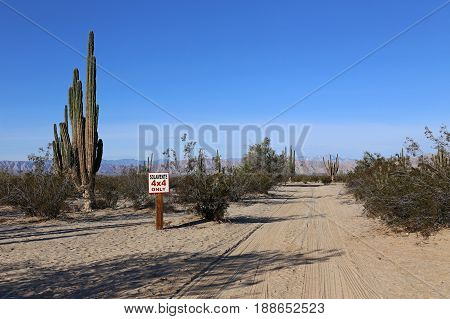 Only 4 by 4 sign ind the Baja California Desert, between Cactus