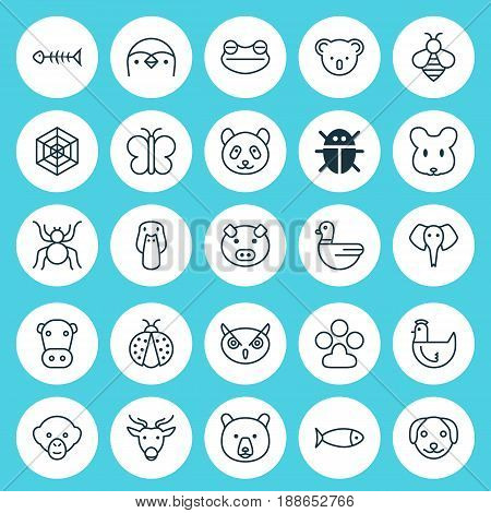 Zoology Icons Set. Collection Of Bear, Marsupial, Toad And Other Elements. Also Includes Symbols Such As Dog, Owl, Frog.