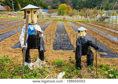 Two Scarecrow at Japanese farm Yamanashi Japan.