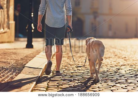 Morning in the city. Young man walking with his dog on the old street at golden sunrise. Prague Czech Republic