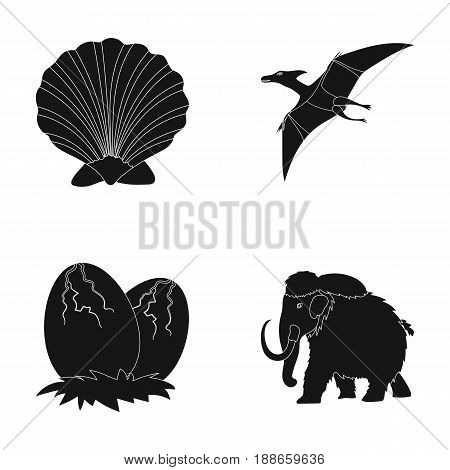 Prehistoric shell, dinosaur eggs, pterodactyl, mammoth. Dinosaur and prehistoric period set collection icons in black style vector symbol stock illustration .