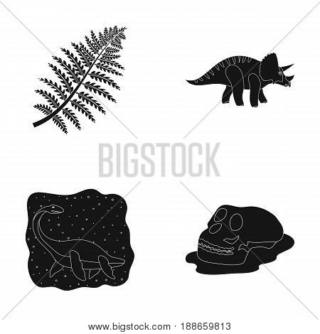 Sea dinosaur, triceratops, prehistoric plant, human skull. Dinosaur and prehistoric period set collection icons in black style vector symbol stock illustration .