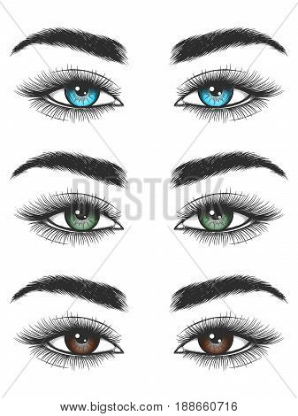Hand drawn look of blue, green and brown female eyes isolated on white backdrop. Vector illustration